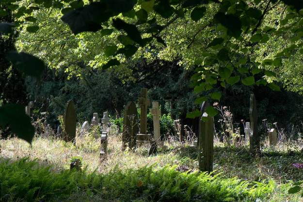 Fig. 22 The Bourne Graveyard - 1/100 at f/16, ISO 560